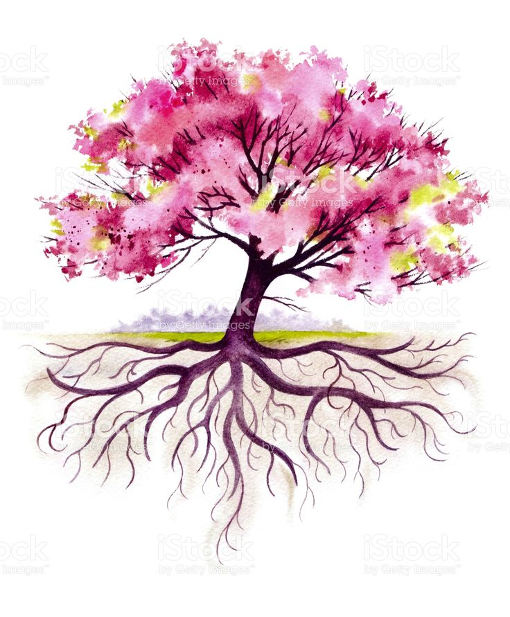 M s de 25 ideas incre bles sobre tatuaje de ra ces de for Pintura color albero