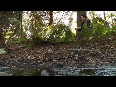 http://sustainabilityhub.com/kidsvideos/ This site links in with the cross curriculum priority of Sustainability to encourage students to make informed and valued choices regarding issues regarding the future of the environment. It supports teachers by providing a range of videos to suit all ages within the primary classroom and encourage positive choices within a school setting and the wider community environment.