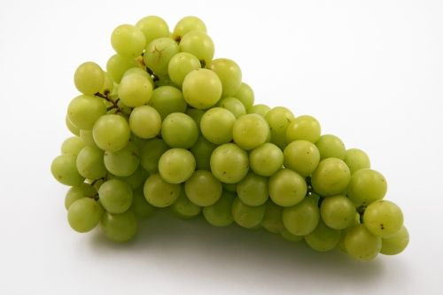 When you put grapes in the microwave they EXPLODE~