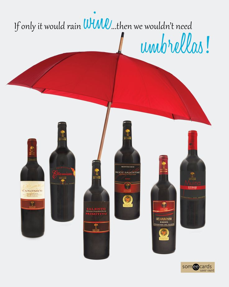 For more information on Cantine Due Palme, head over to worldwinesus.com