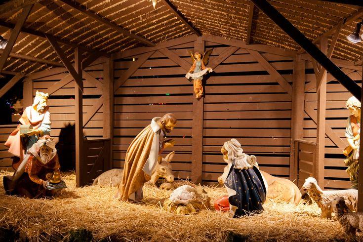 Nacimiento-de-Jesus-en-el-pesebre-con-Maria-y-Jose-en-Navidad.jpg (1600×1066)