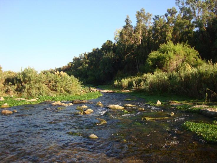 El río Limarí riega hectáreas de frutas y verduras de gran calidad que han posicionado en todo Chile a Ovalle.