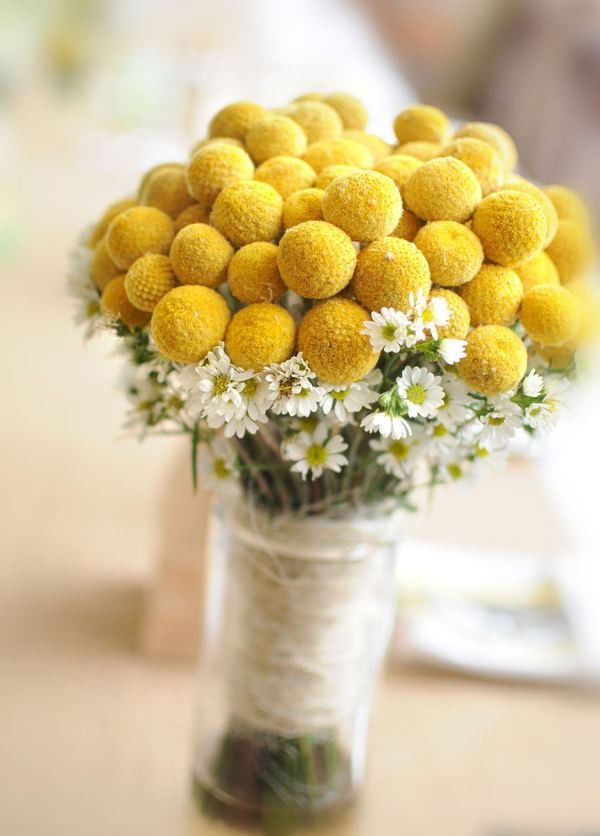 Flowers: Yellow Flowers, Billy Ball, Yellow Wedding, Wedding Bouquets, Buttons Bouquets, Billy Buttons, Daisies, Yellow Bouquets, Bridesmaid Bouquets