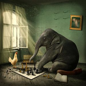 Photograph - Elephant Chess by Ethiriel  Photography