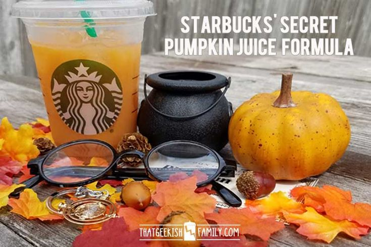 Did you know that Starbucks has a secret recipe for Pumpkin Juice that tastes just like you got it at the Wizarding World of Harry Potter? Here's the secret formula...