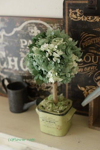 【募集します】紫陽花のトピアリー作りませんか?|Flower note の 花日記 (横浜・上大岡 アレンジメント教室)