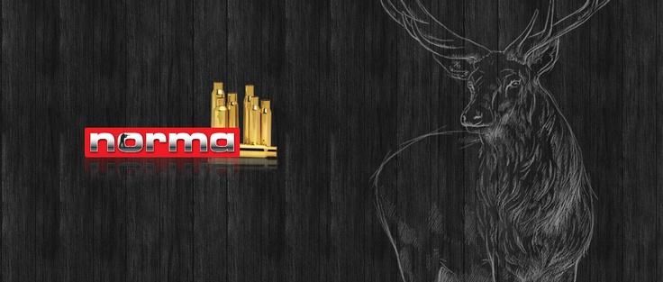 Under 2011 utvecklade Ninetech en ny webbplats åt Norma på EPiServer som matchar företagets tryckta material och grafiska profil på ett enhetligt sätt.