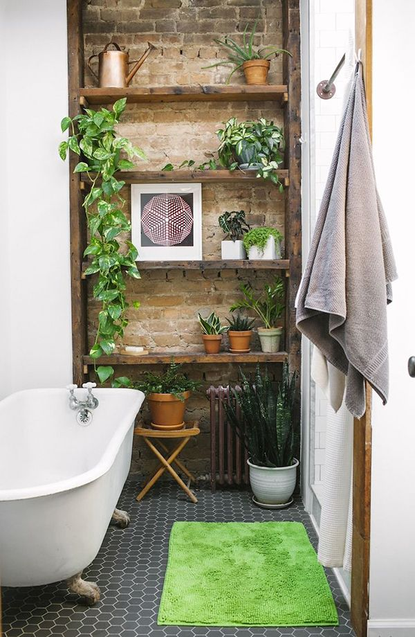 plants on a shelf, old brick, old wood, dark tiles and white grout.