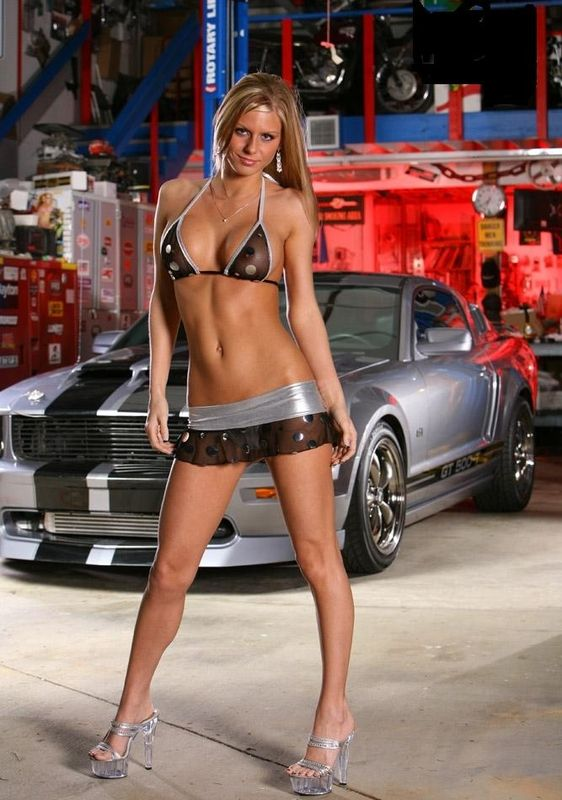 101 Best Images About 5 0 Mustangs On Pinterest Saleen