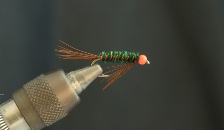 Bead Head Diawl Bach - Fly Tying Lesson Video Tutorial by Curtis Fry