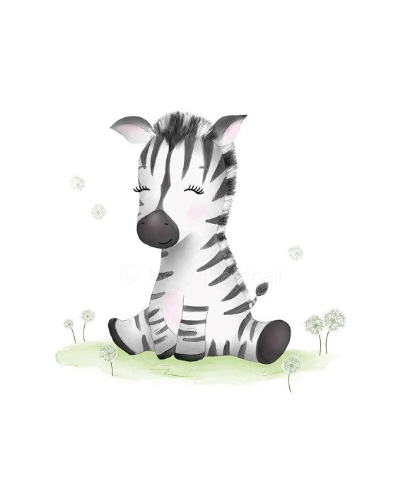 Zebra Nursery Art  Baby Zebra  Zebra Baby by SweetCheeksImages