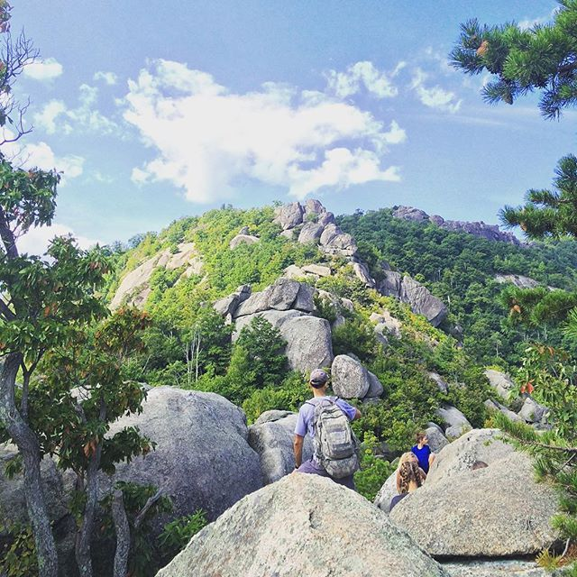 Waiting to keep going up the ridge to #OldRag #mountains #oldrag #oldragmountain #hiking #Virginia #shenandoah #findyourpark