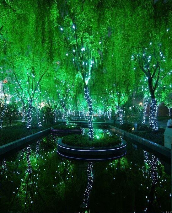 Bosque Magico en Shanghai