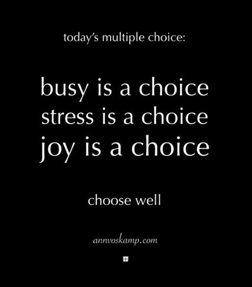 Ann Voskamp~Hey Soul? So you get multiple choice today: Busy is a choice. Stress is a choice. Joy is a choice. You get to choose.