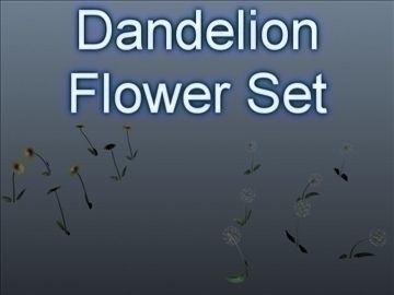 Dandelion Set 001 3D Model-   Set of 14 unique Dandelion flowers.Good geometry, useful for near renders. Enable Two Sided rendering in your rendering application. The 3ds Max 8 material setup (textures are included) has the flower materials set to 2-sided rendering, leaves have local material supersampling enabled for accuracy with the leaf opacity map. These preview images were rendered in 3ds Max 8, scanline renderer, with basic lighting, nothing fancy. User will need to light the flowers from their own scene and rendering setup. You may need to reloadreassign the textures after loading the file, same goes for the 3DS and OBJ formats.Triangles: 24300Vertices: 24100Item Count: 14 unique flowers. - #3D_model #Flowers