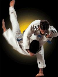 adidas Contest Judo Gi