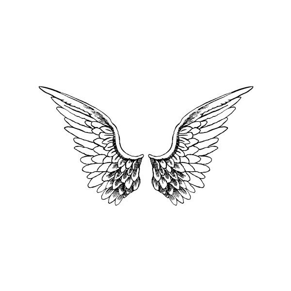Angel wings image by jillybean_11 on Photobucket ❤ liked on Polyvore featuring backgrounds, wings, drawings, other and fillers