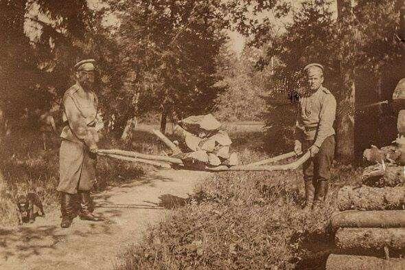 «Простоял чудный день с проходящими тучами. Утром хорошо погулял. У Аликс уже несколько дней болит шея, и поэтому она не выходит в сад. Сегодня спилили четыре сухих дерева и разделали их под дрова. После чая читал в новом кабинете» (13 июня 1917 года).  Николай II вместе со стрелком одного из запасных батальонов гвардейских стрелковых полков переносят наколотые дрова