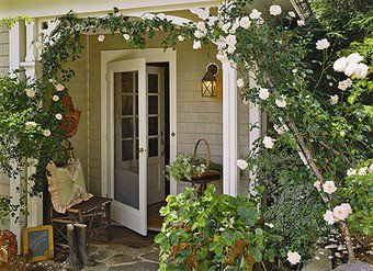 would love this for my back porch!: Front Doors Ideas Plants, Back Doors, Climbing Rose, Curb Appeal, Gardens, Back Porches, Screens Doors, House, Front Porches