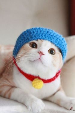 ドラえもん! Doraemon!