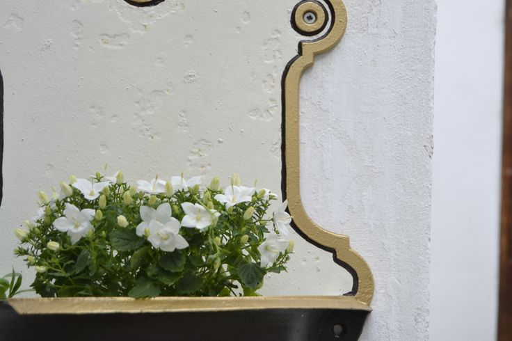 Courtyard detail @ Felinarul Residence