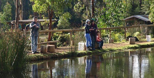 Trout & salmon ponds around Marysville. Catching fresh fish for dinner! www.marysvilletourism.com/visit-marysville-apps