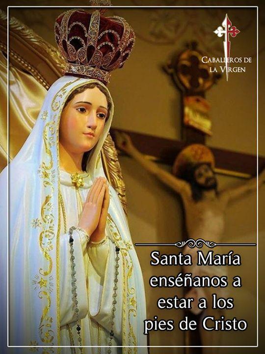 """""""Nuestra Señora nos quiere tanto que todo cuanto le pidamos ciertamente obtendremos. Por poco que valgan nuestras oraciones María Santísima recoge nuestras preces y con los méritos de Ella las vuelva magníficas."""" Plinio Corrêa de Oliveira"""