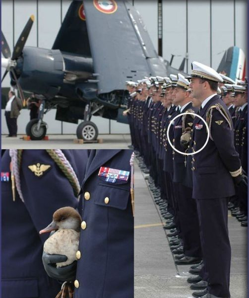 25 Pictures Of Soliders' Hearts Melting