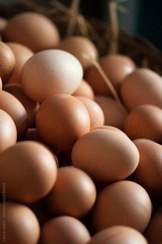 fresh brown eggs by LauraAdani | Stocksy United