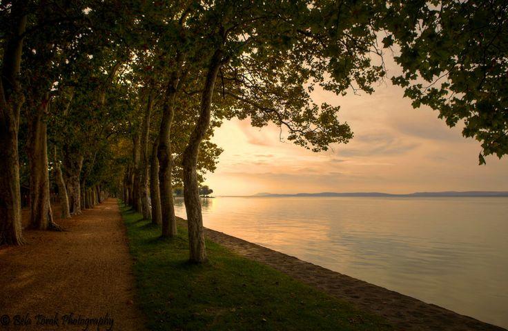 Sunset Path by Béla Török on 500px Balatonföldvár, Hungary