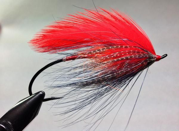 Feather wing stuff tied by clint goodman flies for Fly fishing feathers
