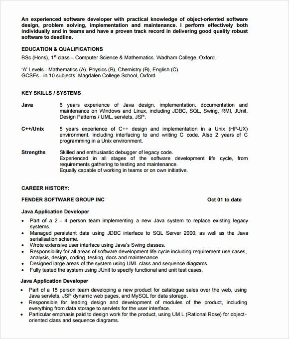 Resume Format For 8 Months Experience Resume Format New Resume Format Resume Format Good Objective For Resume