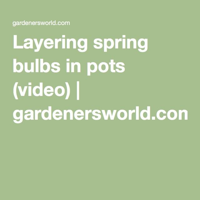 Layering spring bulbs in pots (video) | gardenersworld.com  Do this in the autumn