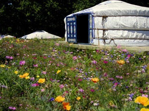 Staying in a yurt during our holidays is the best way to experience a little taste of Mongolia...