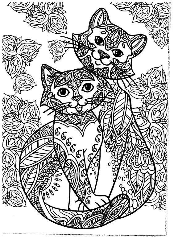 Mejores 498 imágenes de Just Cats 3 (and a few dogs) en Pinterest ...