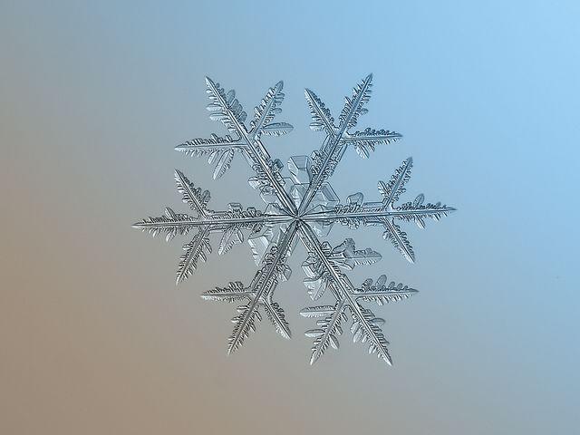 Snowflake macro: asymmetriad   Flickr - Photo Sharing!