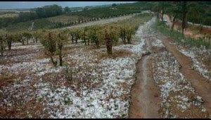Galdino Saquarema Noticia: Chuva de granizo atinge o Sul de Minas Gerais