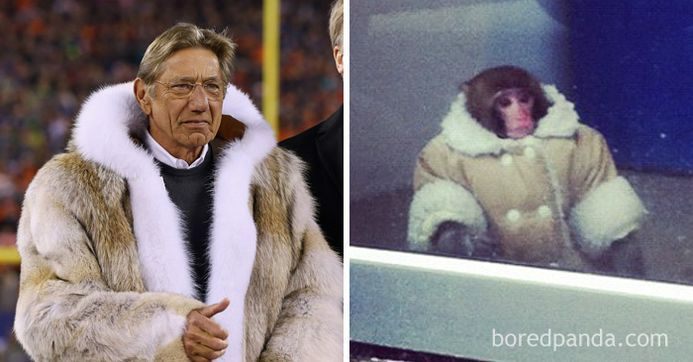 Who Wore It Better? – 100 Funny Pictures
