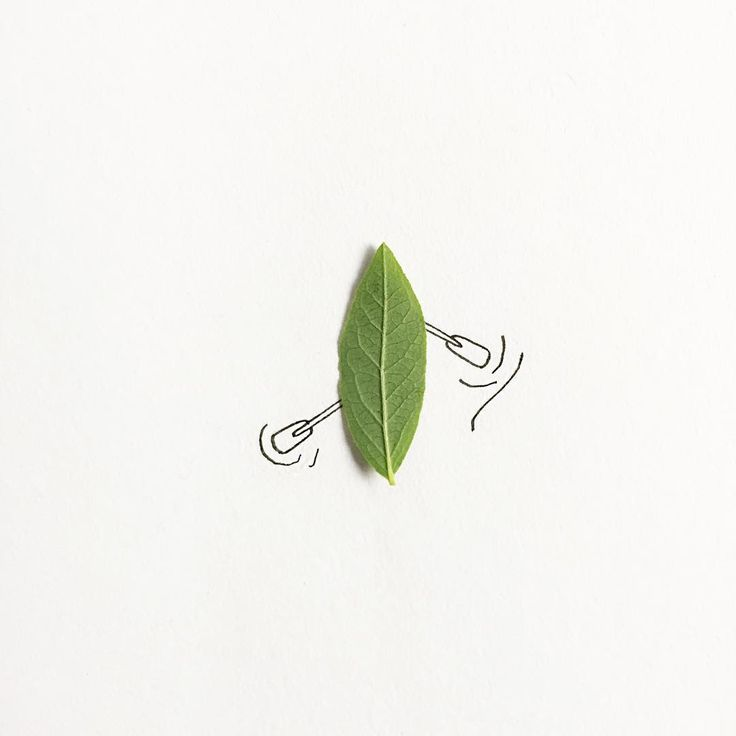Cheap canoes you can grow at home! #100daysoftinythings #the100dayproject #nothingisordinary
