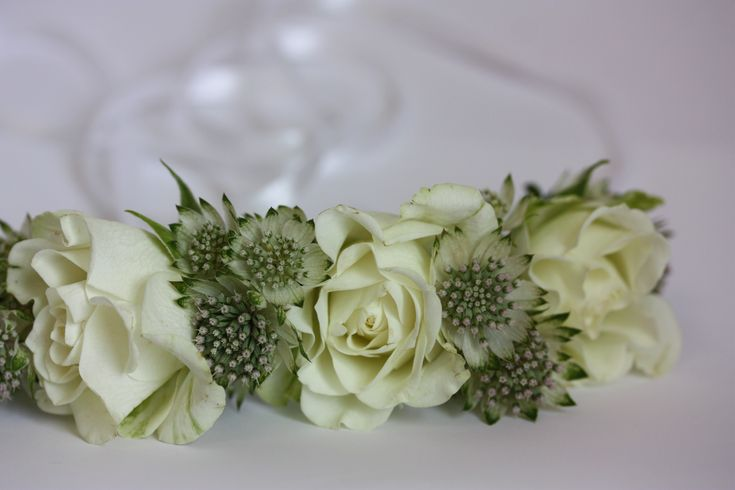 Simple, but beautiful bridesmaid circlet. Just Astrantia and Spray Rose, perfect for a little one