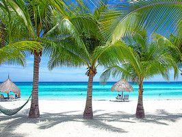 Get lost in the crystal-clear waters of Bohol Island in the Philippines.Favorite Places, Daily Escape, Province Philippines, Panglao Islands, Bohol Province, Nice Places, Beach, Crystals Clear Water, Bohol Islands