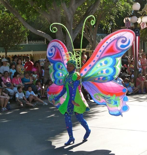 A Colorful Butterfly Costume With Very Large Wings