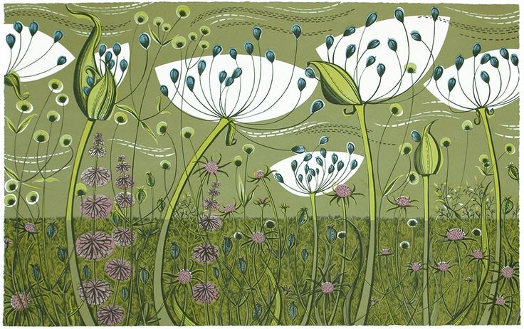 Agapanthus - lithograph by Angie Lewin - www.angielewin.co.uk