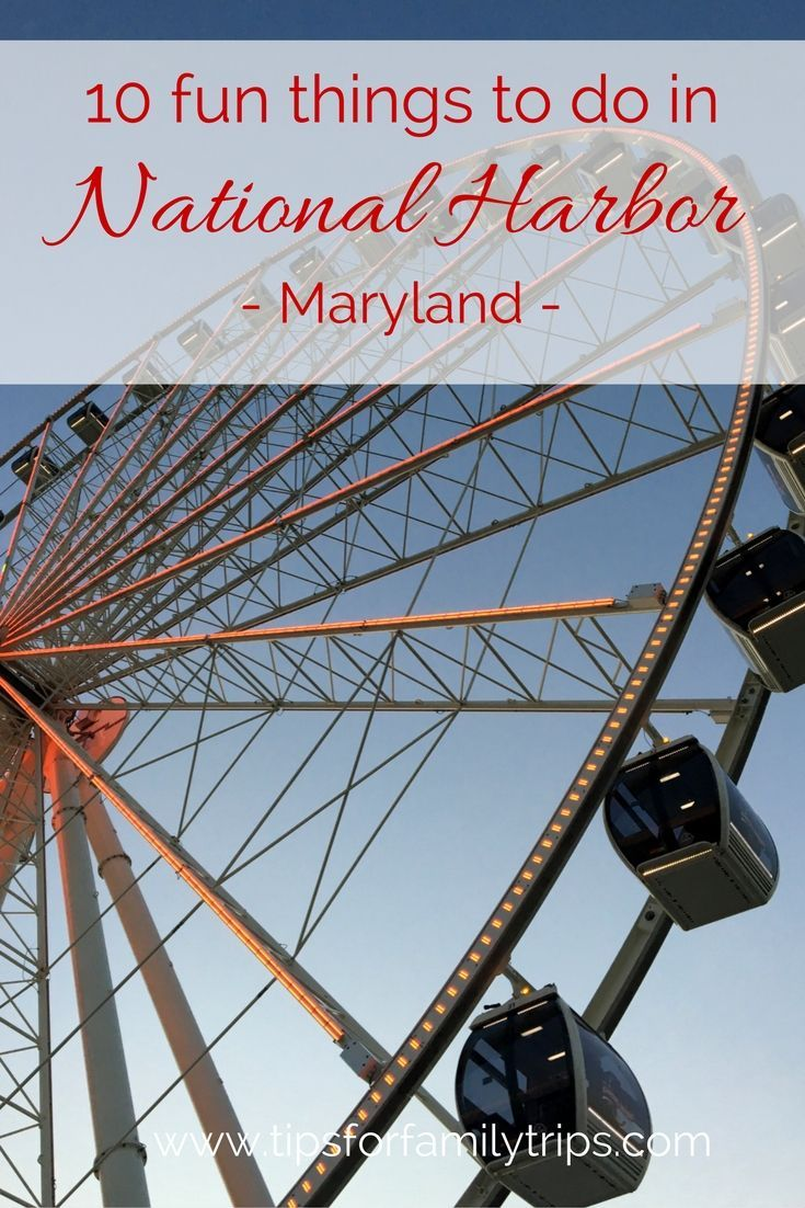 10 fun things to do in National Harbor, Maryland with kids | tipsforfamilytrips.com | Washington DC | Gaylord National | Capital Wheel | national harbor events | national harbor md | national harbor restaurants