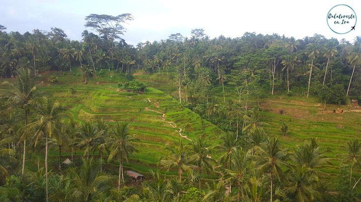 Curiozităţi despre Bali şi balinezi