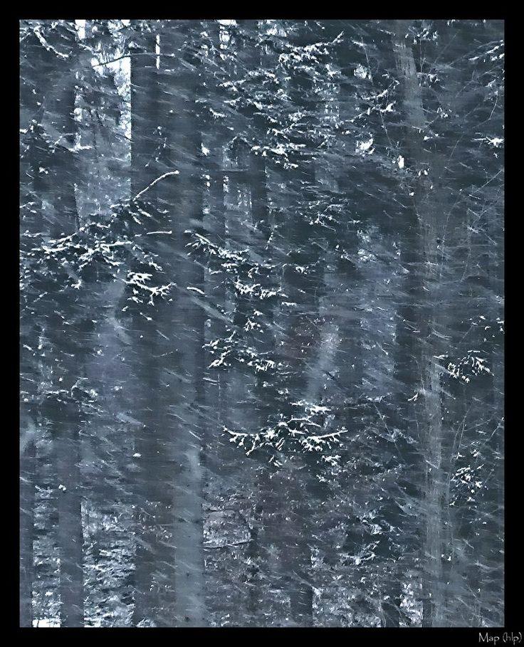 phantasms in the snow...