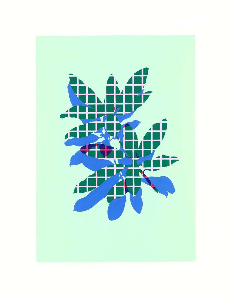 Green Azaleas - Laura Walker | www.laurawalker.co.nz