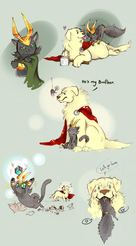 Avengers, Loki, Thor, animals.