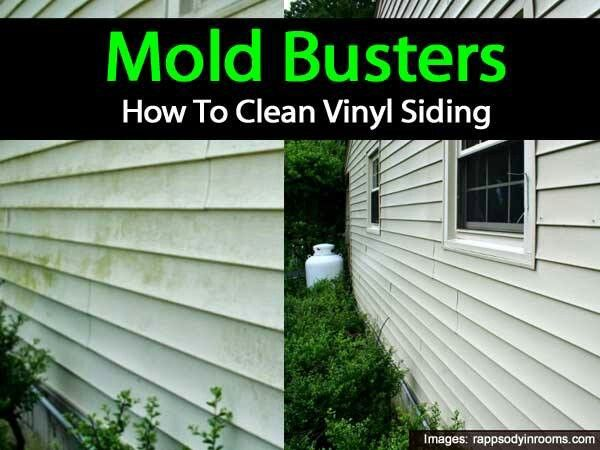 Mold Busters How To Clean Vinyl Siding Household
