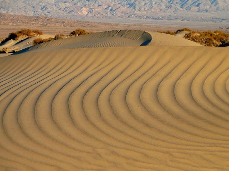 Sand Dunes - Death Valley National Park